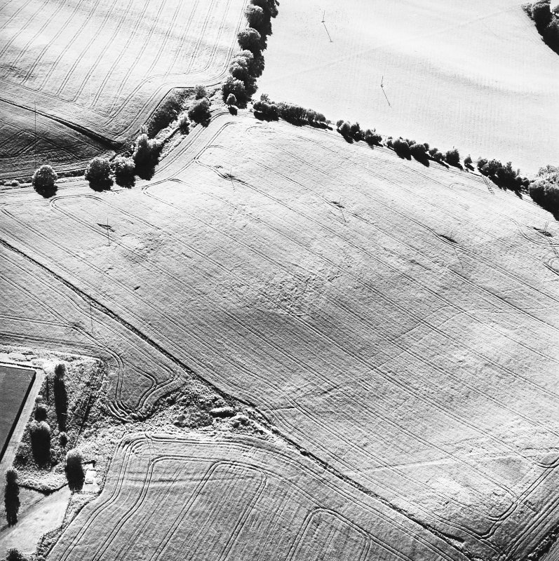 Old Town of Leys, oblique aerial view, taken from the SE, centred on the cropmarks of a palisaded enclosure.