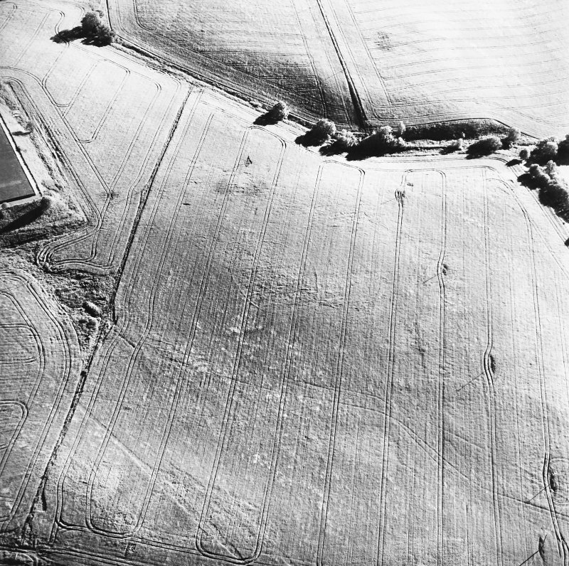 Old Town of Leys, oblique aerial view, taken from the NE, centred on the cropmarks of a palisaded enclosure.
