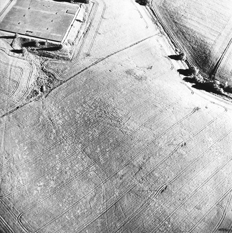 Old Town of Leys, oblique aerial view, taken from the N, centred on the cropmarks of a palisaded enclosure.