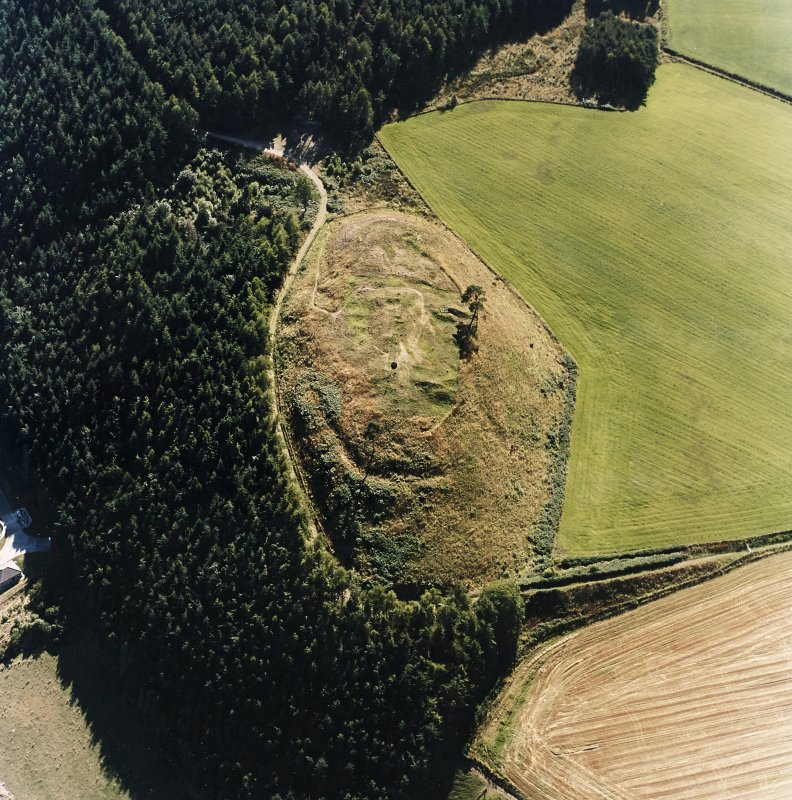 Oblique aerial view centred on the remains of the castle and the possible fort, taken from the NE.