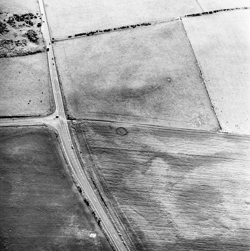 Newton and Upper Cullernie, oblique aerial view, taken from the NE, centred on the cropmarks of a barrow.