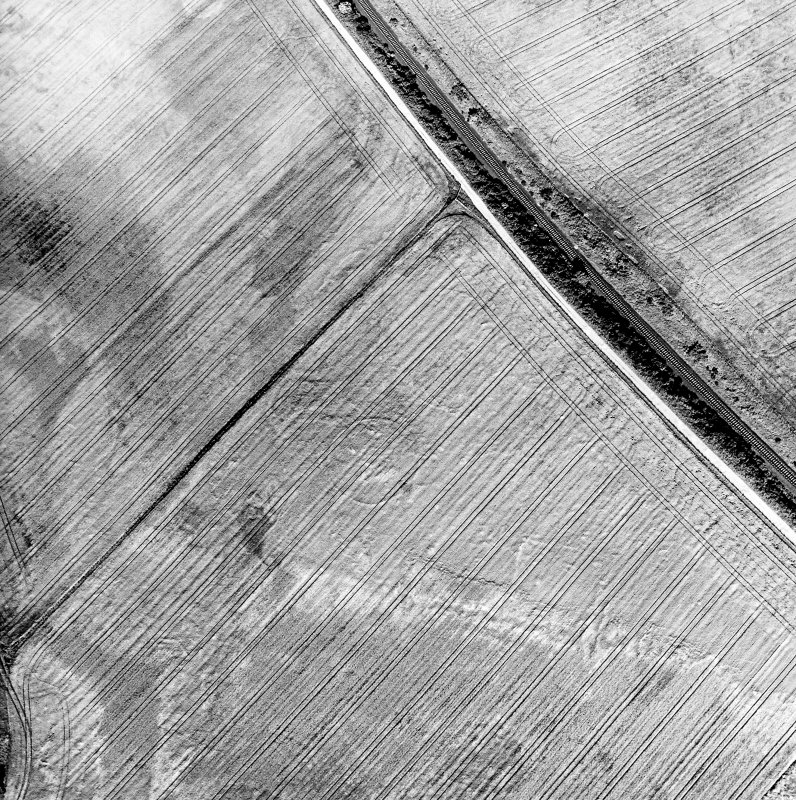 Blackhill, oblique aerial view, taken from the W, centred on the cropmark of three palisaded enclosures.