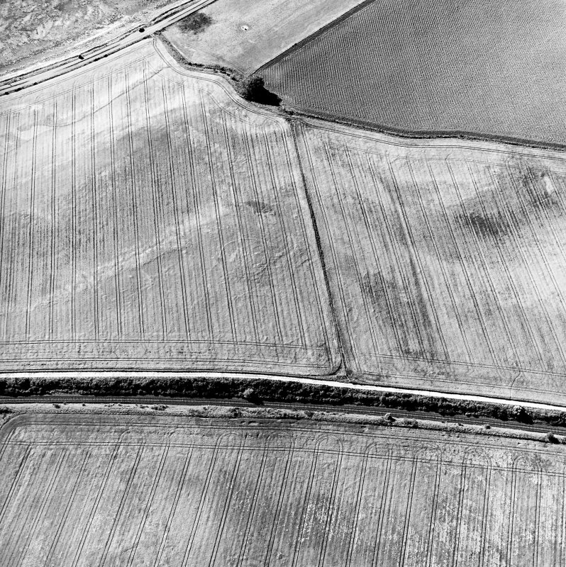 Blackhill, oblique aerial view, taken from the SE, centred on the cropmark of three palisaded enclosures.