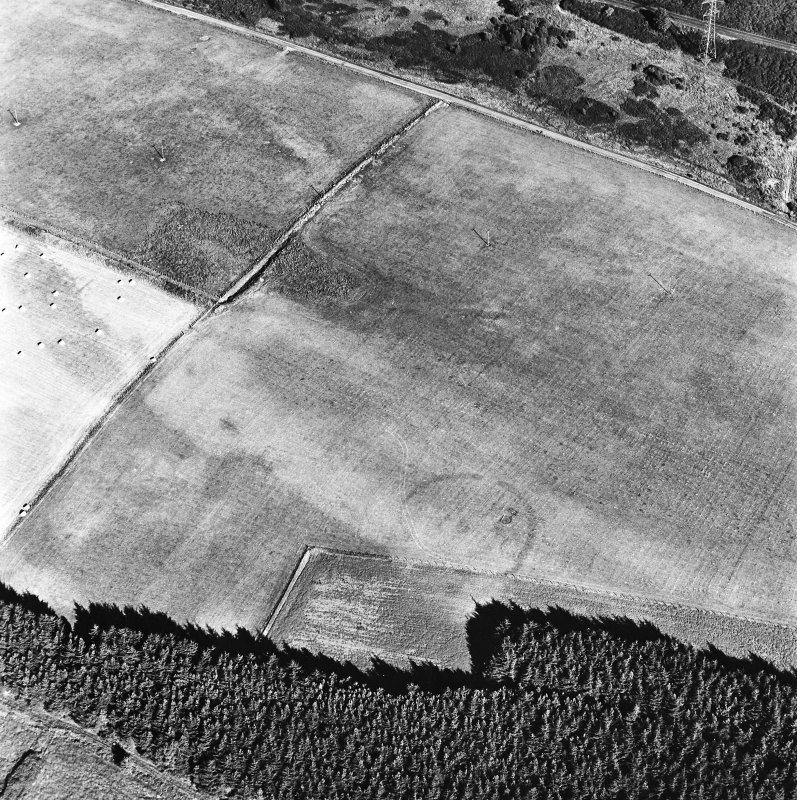 Mains of Daltulich, oblique aerial view, taken from the WSW, centred on the cropmarks of a settlement.