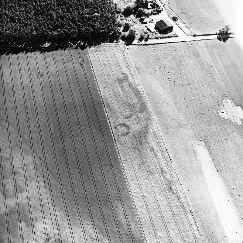 Brackley, oblique aerial view, taken from the NE, centred on the cropmarks of a group of round houses.