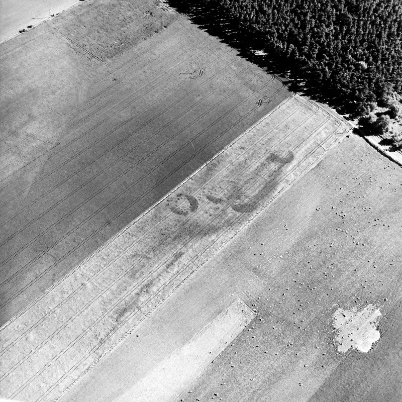 Brackley, oblique aerial view, taken from the N, centred on the cropmarks of a group of round houses.
