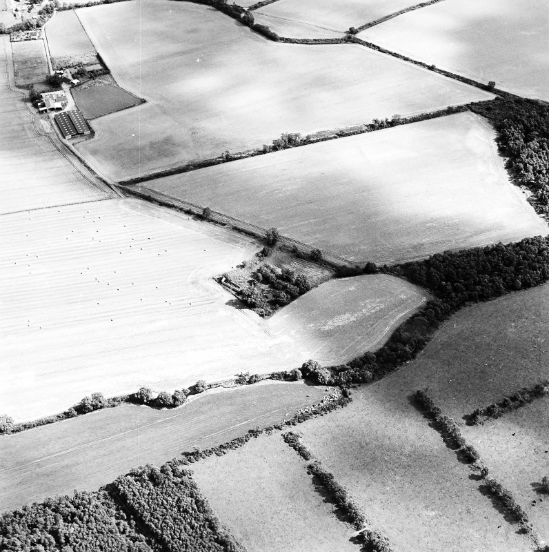 Oblique aerial view of Whitehill centred on the remains of a farmsteading with the remains of a tower-house adjacent, taken from the W.