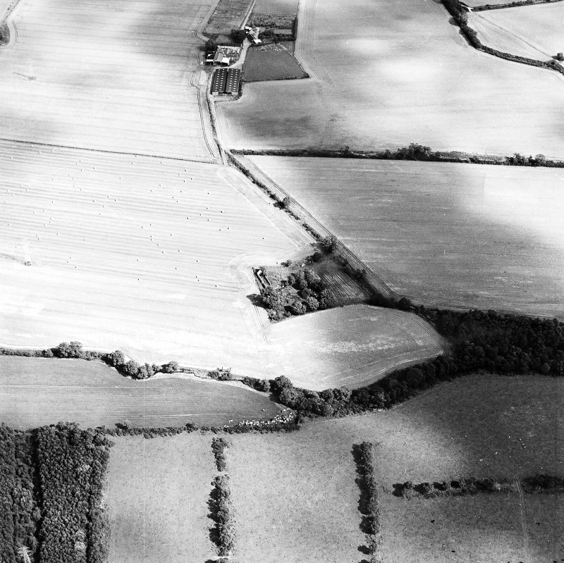 Oblique aerial view of Whitehill centred on the remains of a farmsteading with the remains of a tower-house adjacent, taken from the WSW.