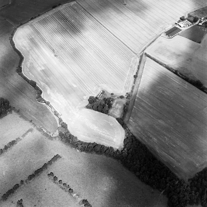 Oblique aerial view of Whitehill centred on the remains of a farmsteading with the remains of a tower-house adjacent, taken from the SW.