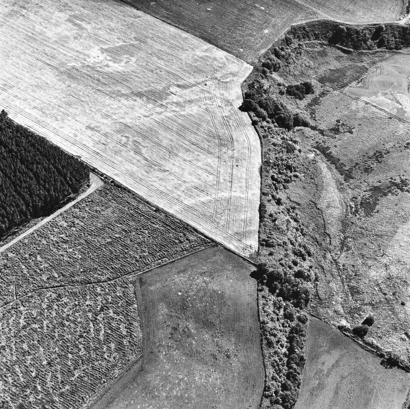 Easterton Wood, oblique aerial view, taken from the N, centred on the cropmarks of a possible fort.