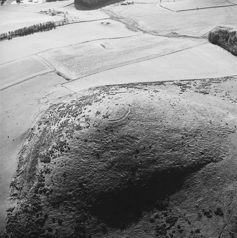 Oblique aerial view of Wheedlemont centred on the remains of a fort, taken from the NE.