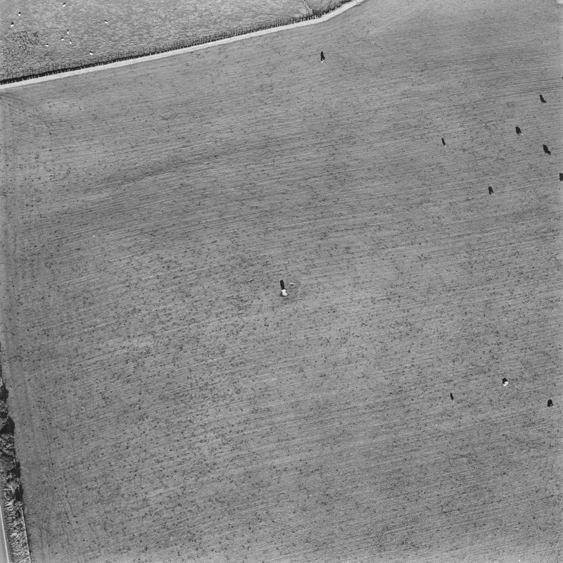 Oblique aerial view of Rhynie, Craw Stone centred on a Pictish symbol stone, taken from the S.