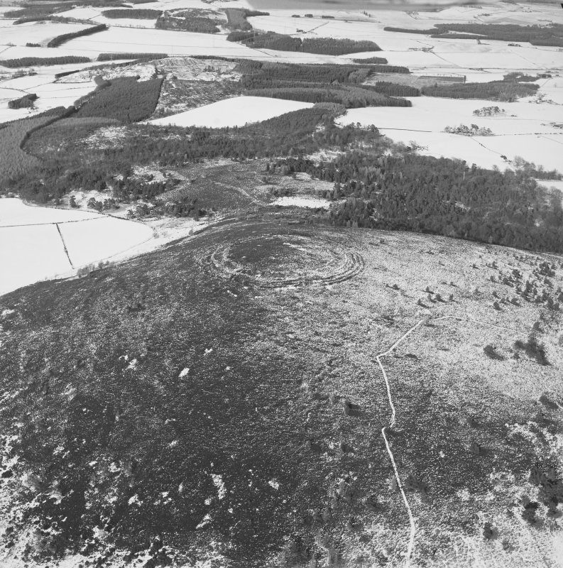 Oblique aerial view of the remains of fort taken from the S.