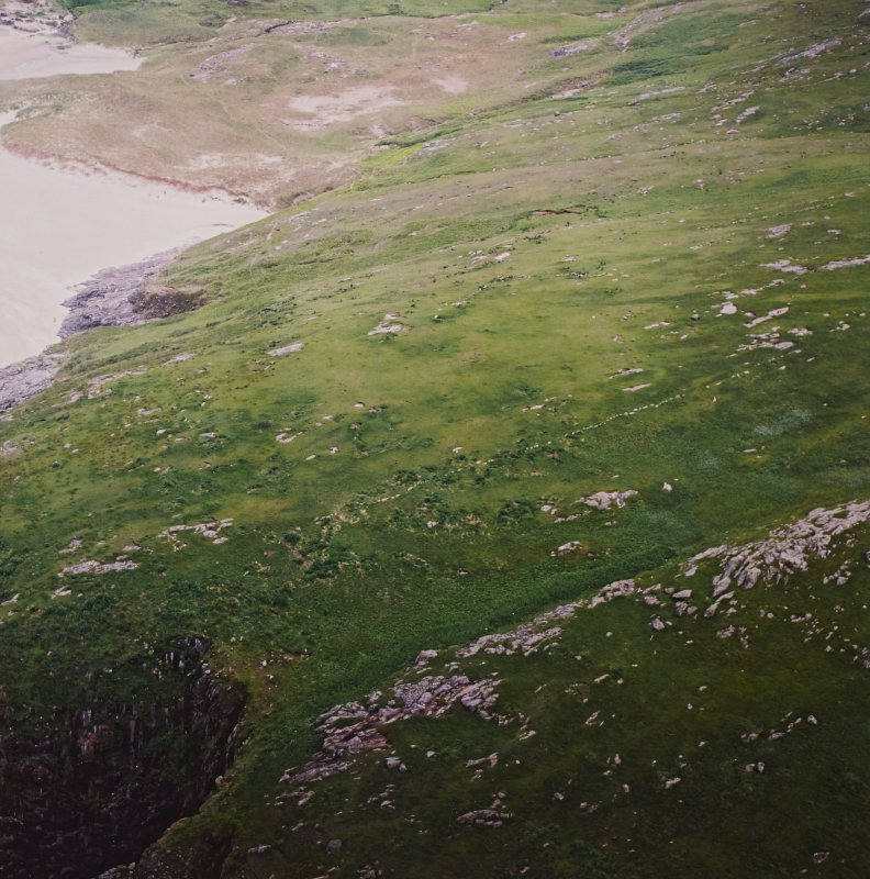 General oblique aerial view of the remains of the head-dyke and field enclosures, taken from the NE.