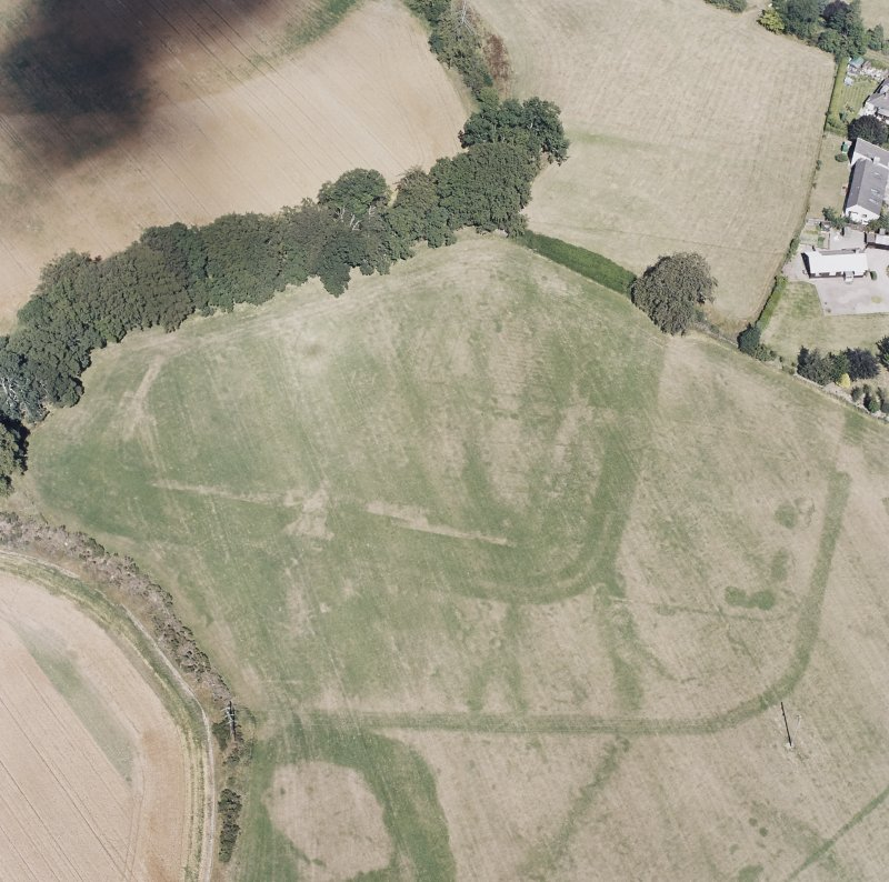Dalginross, oblique aerial view, taken from the SSW, centred on the cropmarks of the Roman Fort.