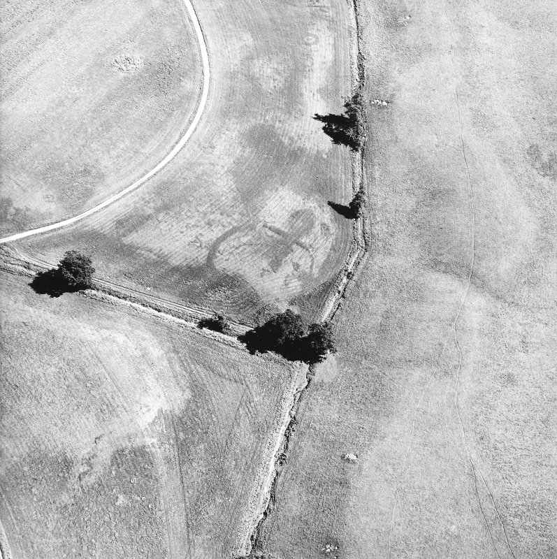 Monzie, oblique aerial view, taken from the WNW, centred on the cropmarks of a palisaded settlement. Cropmarks of a barrow are visible in the top half of the photograph.