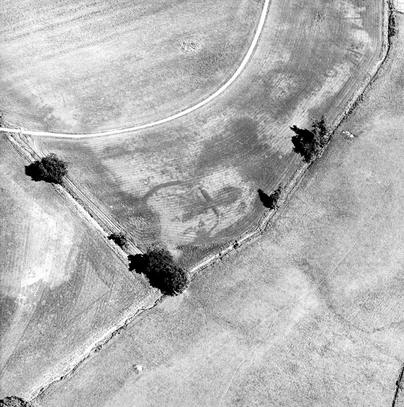 Monzie, oblique aerial view, taken from the WSW, centred on the cropmarks of a palisaded settlement. Cropmarks of a barrow are visible in the top half of the photograph.