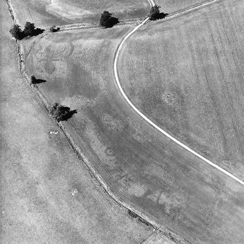 Monzie, oblique aerial view, taken from the SE, centred on the cropmarks of a barrow, possible ring-ditch and moated site. Cropmarks of a palisaded settlement are visible in the top half of the photograph.