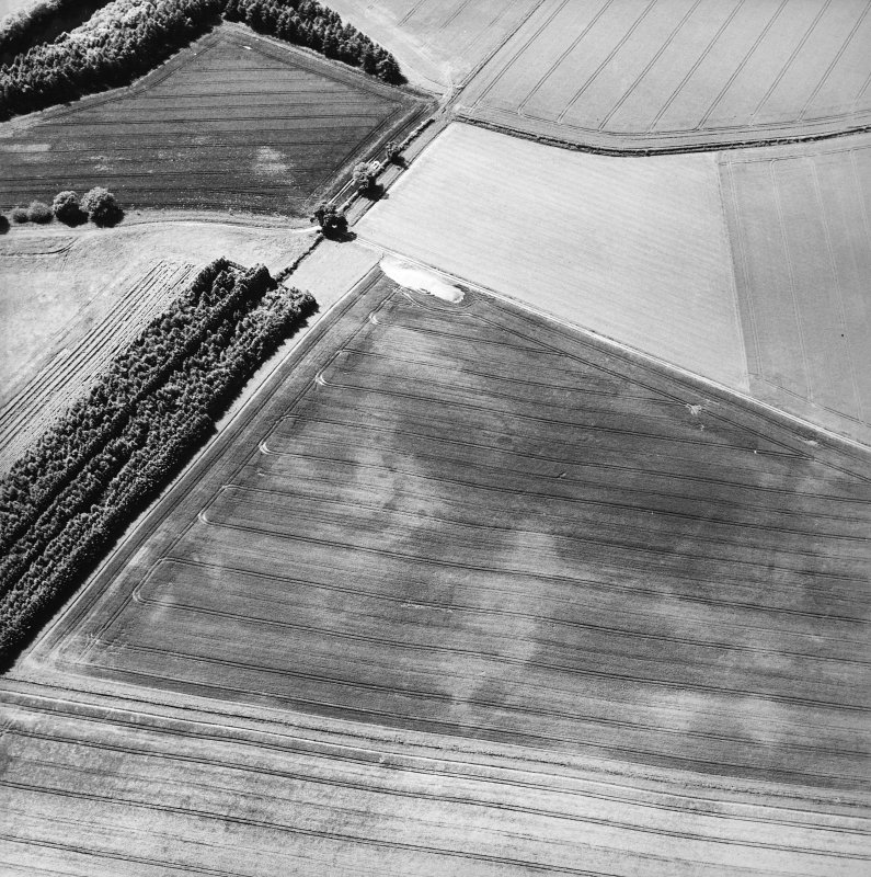 Oblique aerial view centred on the cropmarks of the pits, cropmarks and Roman Temporary Camp, taken from the NE.