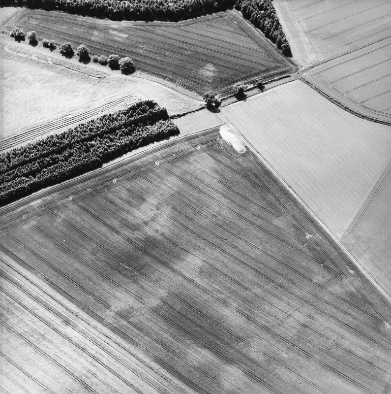 Oblique aerial view centred on the cropmarks of the pits, cropmarks and Roman Temporary Camp, taken from the N.