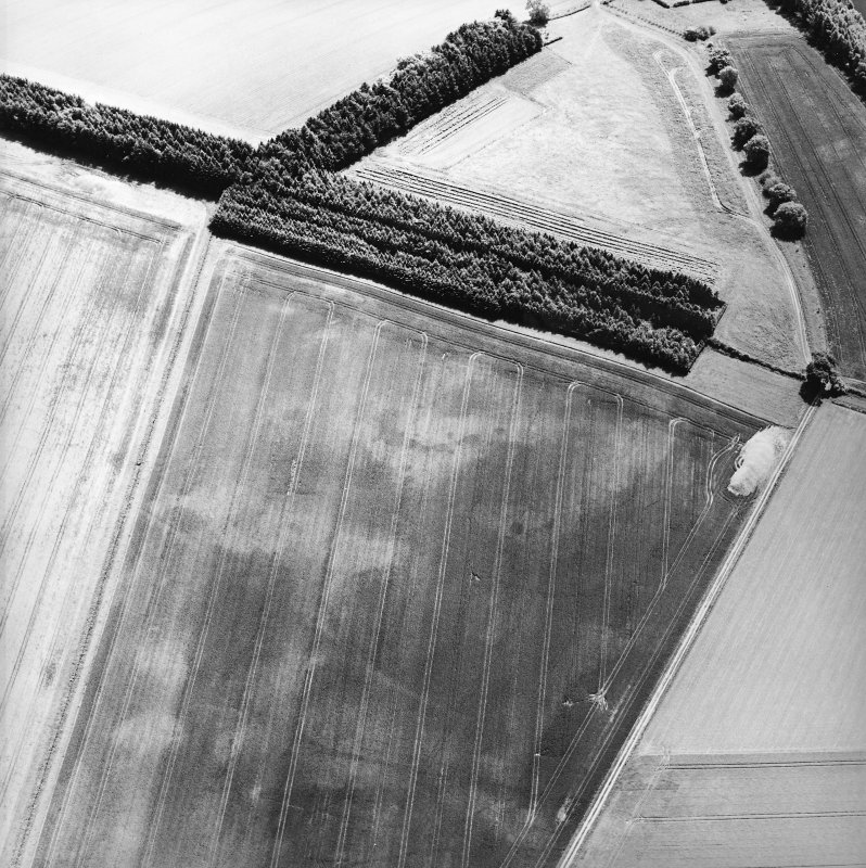 Oblique aerial view centred on the cropmarks of the pits, cropmarks and Roman Temporary Camp, taken from the NW.