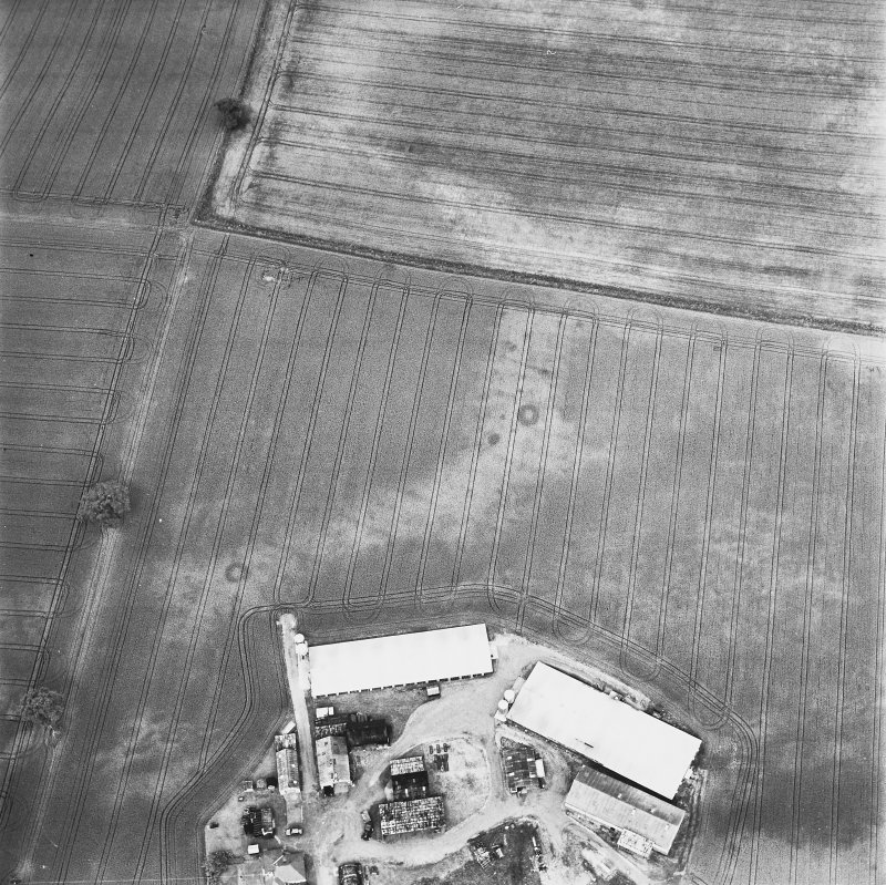 Leadketty, oblique aerial view, taken from the SE, centred on cropmarks of a possible henge, ring-ditches and pits.
