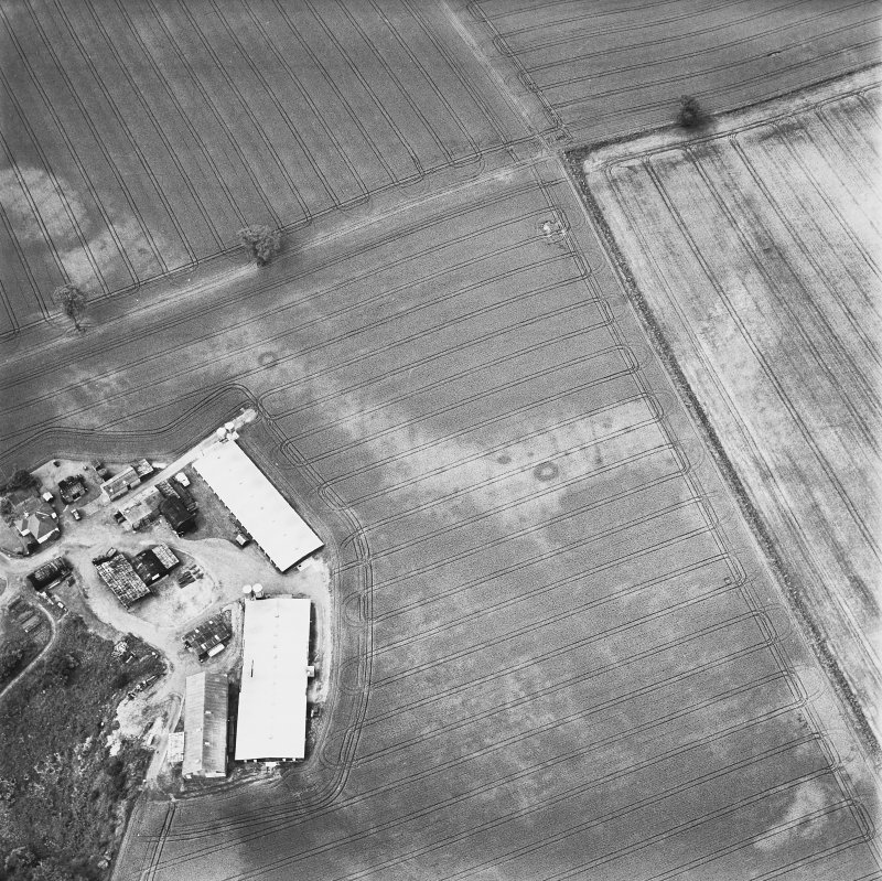 Leadketty, oblique aerial view, taken from the E, centred on cropmarks of a possible henge, ring-ditches and pits.