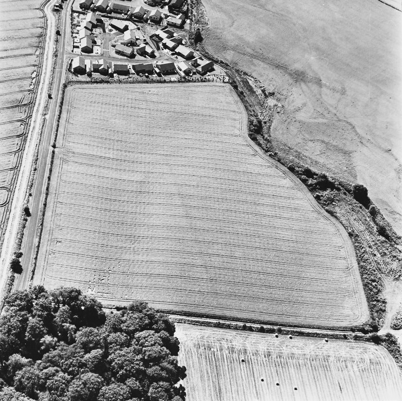 Dunning Roman Temporary Camp, oblique aerial view, taken from the N, showing the cropmark of the W side of the camp.
