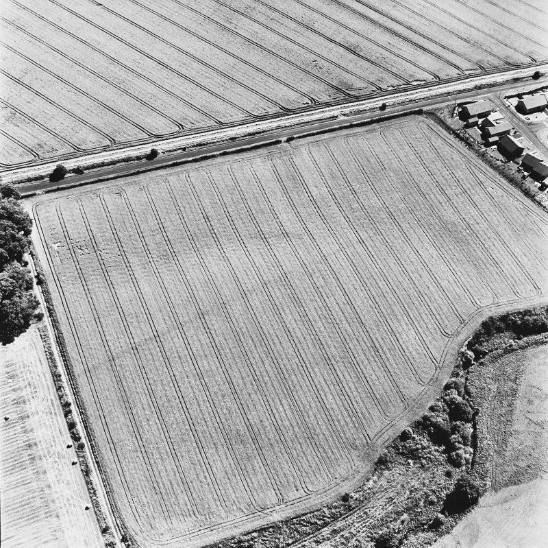 Dunning Roman Temporary Camp, oblique aerial view, taken from the NW, showing the cropmark of the W side of the camp.
