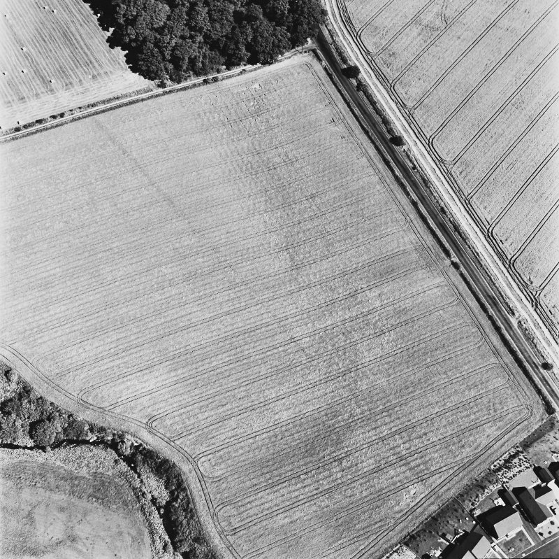 Dunning Roman Temporary Camp, oblique aerial view, taken from the SW, showing the cropmark of the W side of the camp.