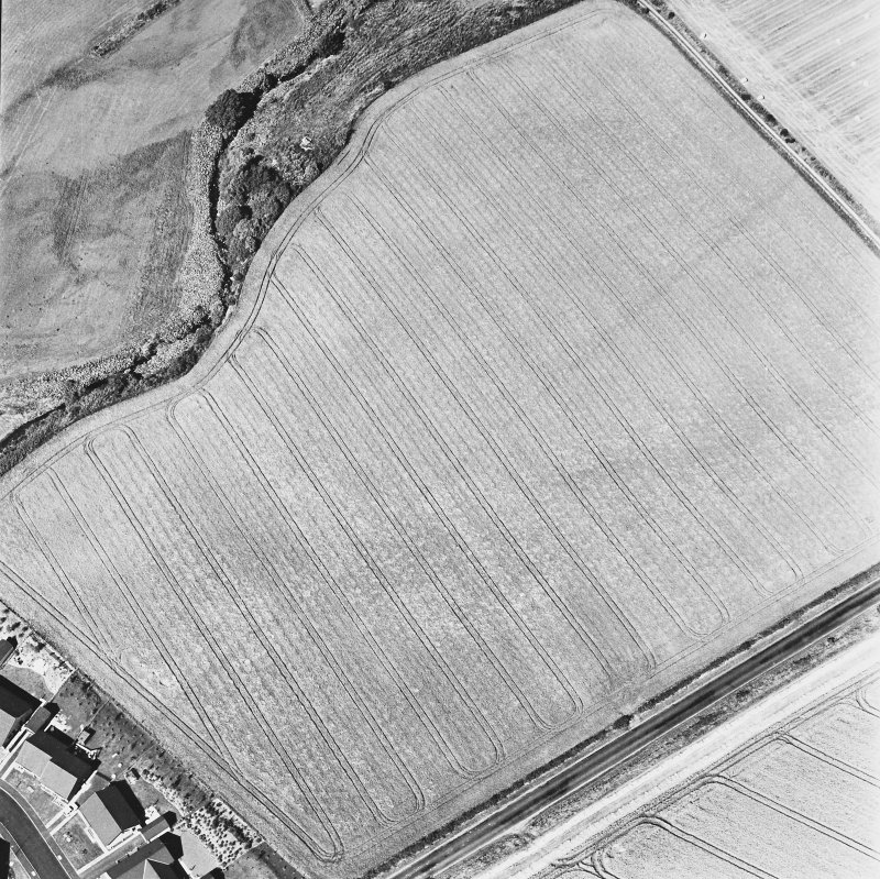 Dunning Roman Temporary Camp, oblique aerial view, taken from the SE, showing the cropmark of the W side of the camp.
