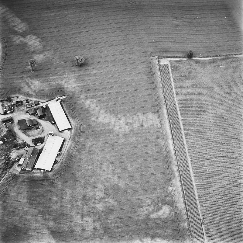 Leadketty, oblique aerial view, taken from the ENE, centred on the cropmarks of a possible henge, ring-ditches and pits.