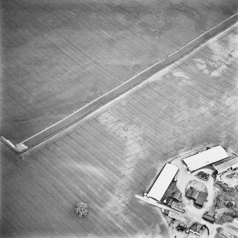 Leadketty, oblique aerial view, taken from the SW, centred on the cropmarks of a possible henge, ring-ditches and pits.