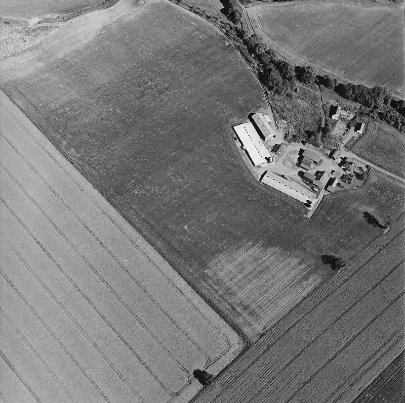 Leadketty, oblique aerial view, taken from the WNW, centred on the cropmarks of a possible henge, pits and ring-ditch.
