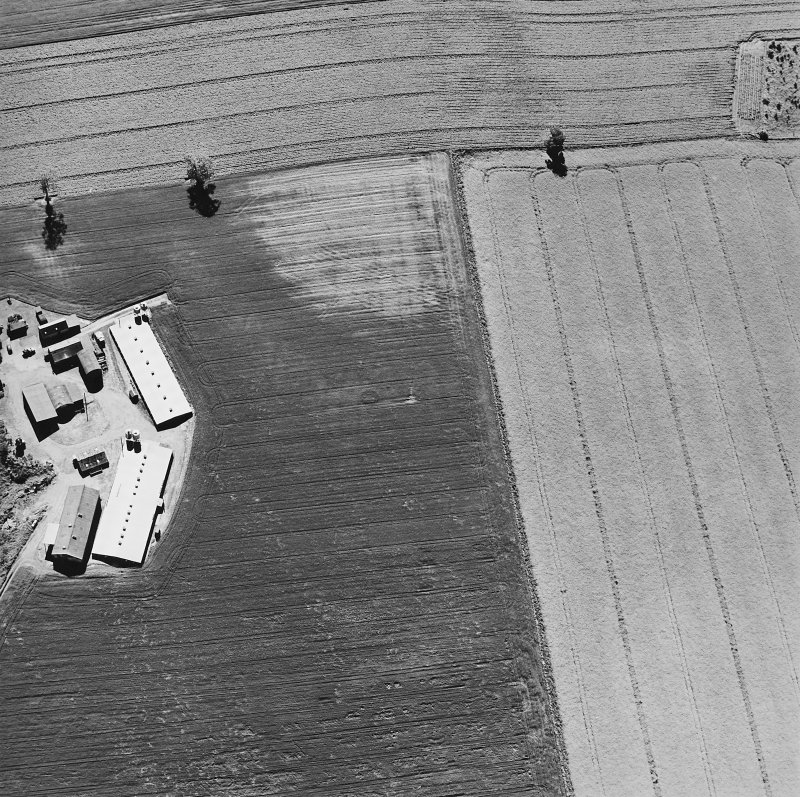 Leadketty, oblique aerial view, taken from the ENE, centred on the cropmarks of a possible henge, pits and ring-ditch.