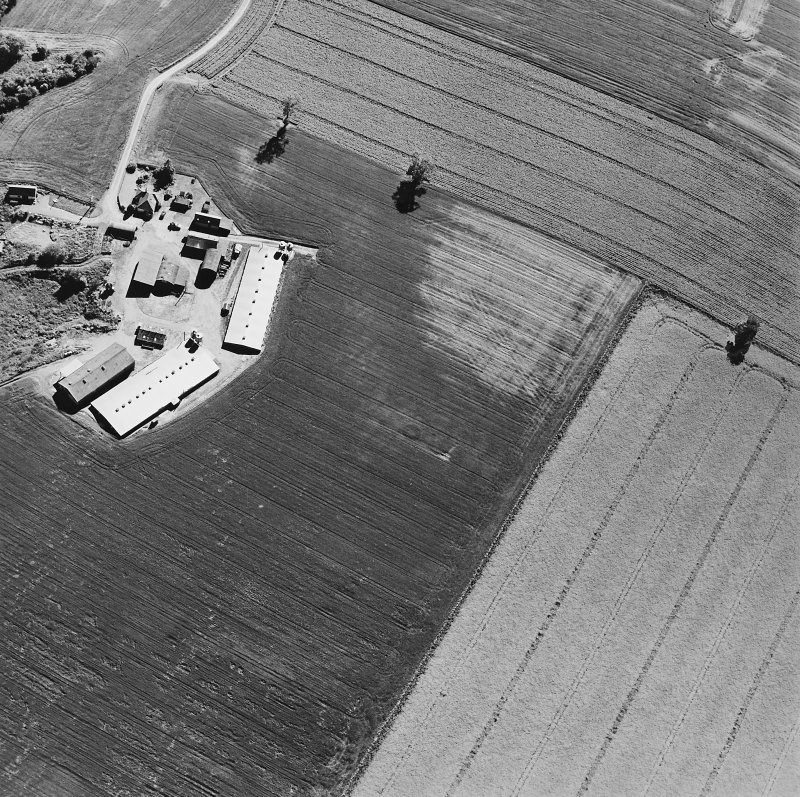 Leadketty, oblique aerial view, taken from the NNE, centred on the cropmarks of a possible henge, pits and ring-ditch.