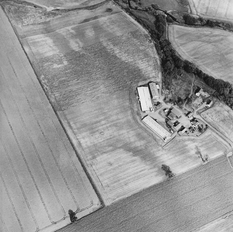 Oblique aerial view of Leadketty centred on the cropmarks of a possible henge, ring ditches and pits, taken from the W.