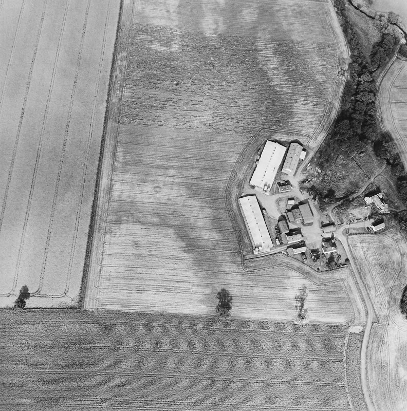 Oblique aerial view of Leadketty centred on the cropmarks of a possible henge, ring ditches and pits, taken from the SW.