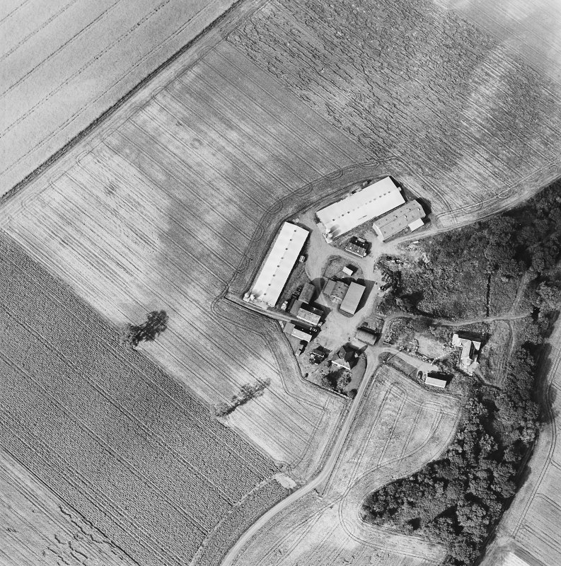 Oblique aerial view of Leadketty centred on the cropmarks of a possible henge, ring ditches and pits, taken from the SSW.