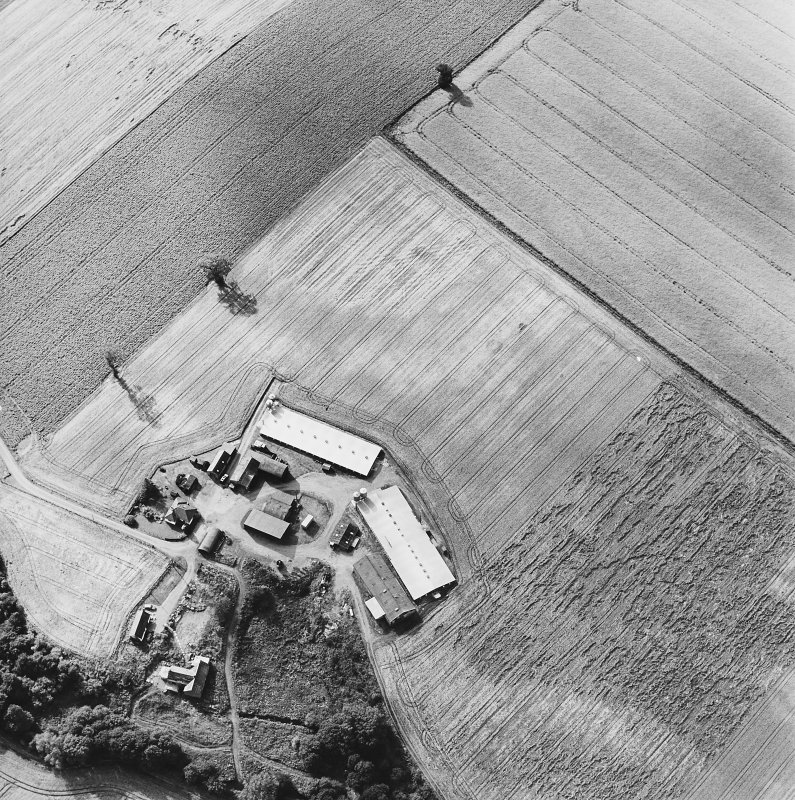 Oblique aerial view of Leadketty centred on the cropmarks of a possible henge, ring ditches and pits, taken from the SE.