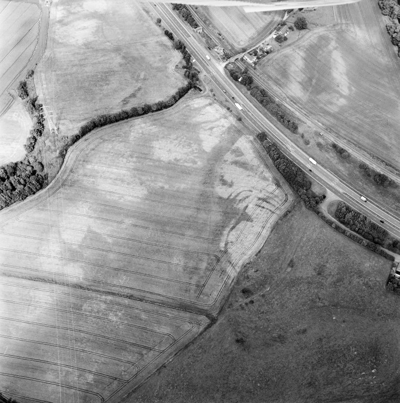 Oblique aerial view centred on the cropmarks of the fort, taken from the SW.