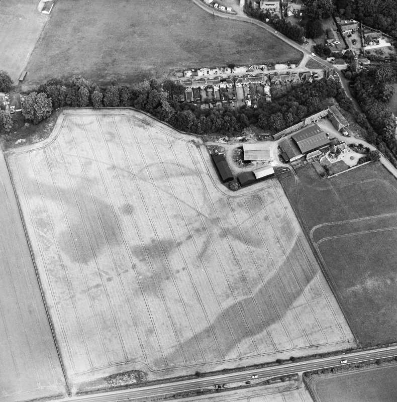 Oblique aerial view of the cropmarks of the enclosure, pits, ring-ditch, pit-alignment and Roman Road, taken from the SSW.