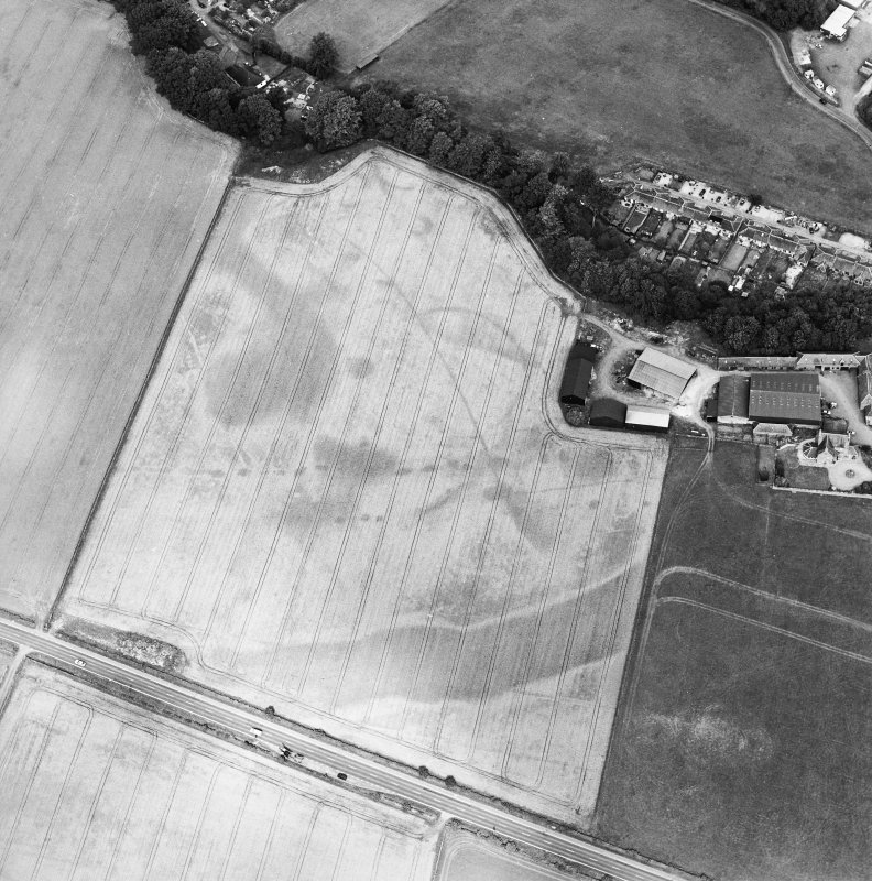 Oblique aerial view of the cropmarks of the enclosure, pits, ring-ditch, pit-alignment and Roman Road, taken from the SSE.