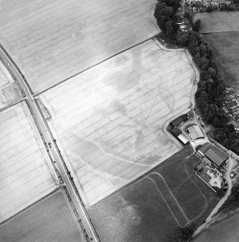 Oblique aerial view of the cropmarks of the enclosure, pits, ring-ditch, pit-alignment and Roman Road, taken from the ESE.