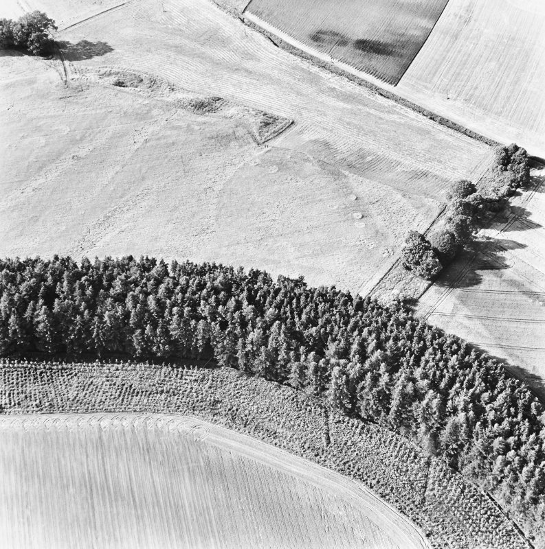 Spittalfield and Wester Drumatherty, oblique aerial view, taken from the SE, centred on the cropmarks of a Roman road and quarry pits, a linear cropmark, a palisaded enclosure, a possible pit-alignment, a round house and souterrains.