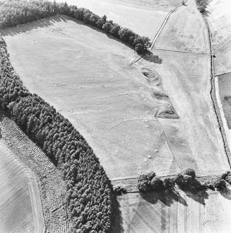 Spittalfield and Wester Drumatherty, oblique aerial view, taken from the ESE, centred on the cropmarks of a Roman road and quarry pits, a linear cropmark, a palisaded enclosure, a possible pit-alignment, a round house and souterrains.