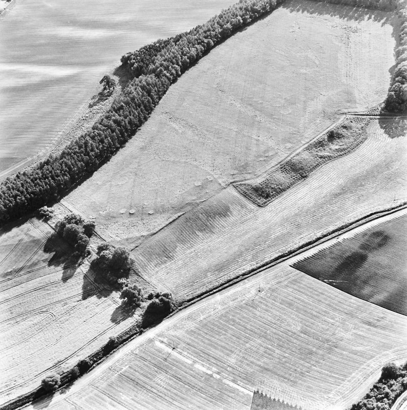 Spittalfield and Wester Drumatherty, oblique aerial view, taken from the NE, centred on the cropmarks of a Roman road and quarry pits, a linear cropmark, a palisaded enclosure, a possible pit-alignment, a round house and souterrains.