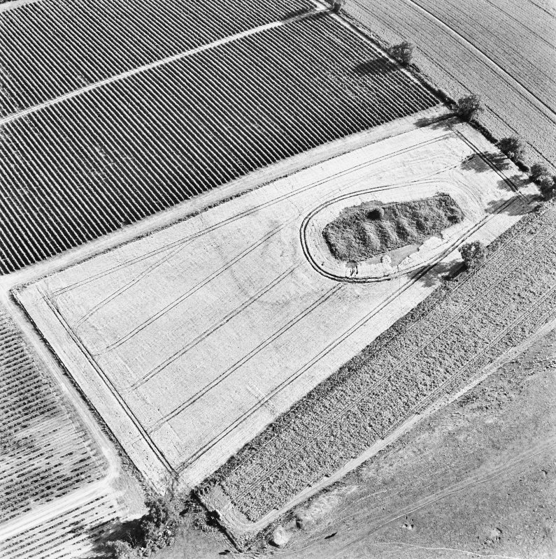 Steeds Stalls, Gourdie, oblique aerial view, taken from the NNE, centred on the cropmarks of the Roman Temporary Camp.