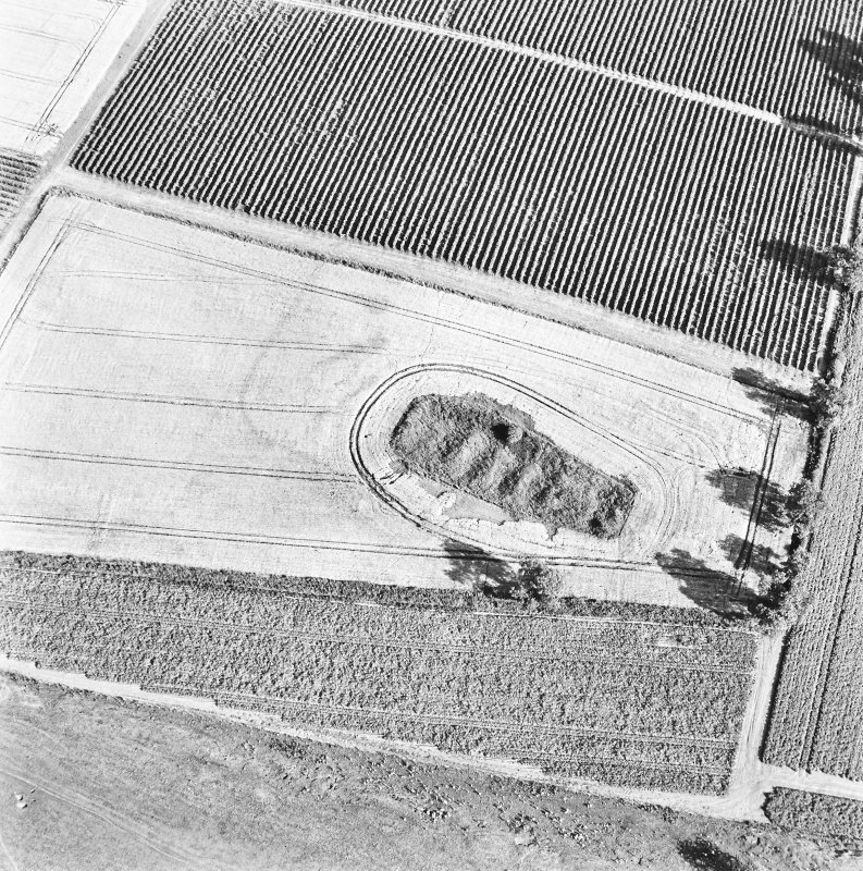 Steeds Stalls, Gourdie, oblique aerial view, taken from the NW, centred on the cropmarks of the Roman Temporary Camp.