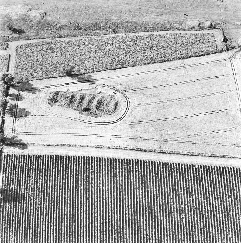 Steeds Stalls, Gourdie, oblique aerial view, taken from the SE, centred on the cropmarks of the Roman Temporary Camp.